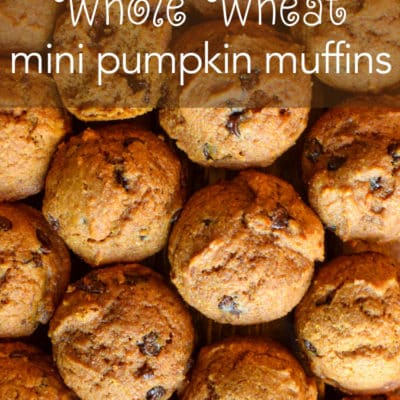 Whole Wheat Mini Pumpkin Muffins.
